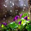 Καιρός: Νεφώσεις, βροχές και καταιγίδες το Σάββατο