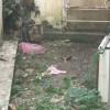 Νέα Σμύρνη: Φωτογραφίες από το μέρος που βρέθηκε η σακούλα με το νεκρό βρέφος!
