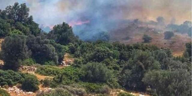 Ξέσπασε πυρκαγιά στην Εύβοια - Στις φλόγες η Κάρυστος