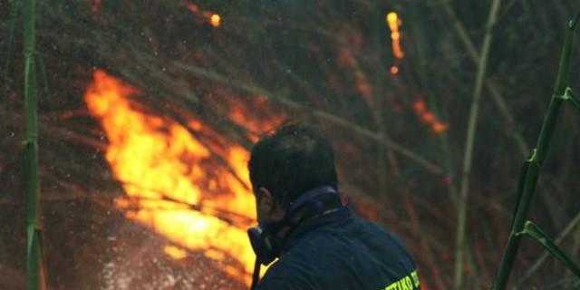 Φωτιά στο Μεσολλόγι
