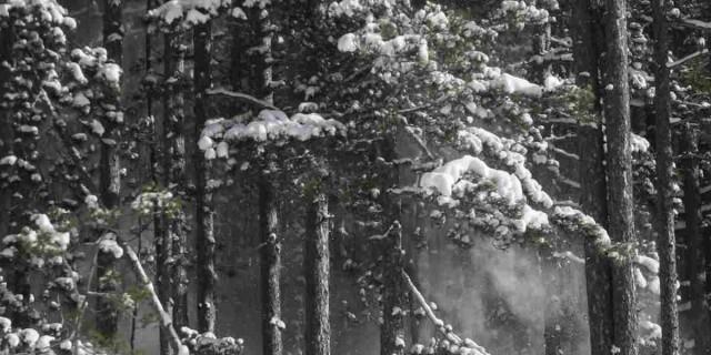 Καιρός (17/1): Τσουχτερό κρύο και χιόνια σε όλη τη χώρα