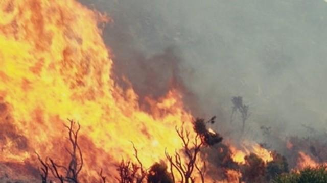 Συναγερμός στην Κρήτη: Ξέσπασε μεγάλη πυρκαγιά στην Ιεράπετρα!