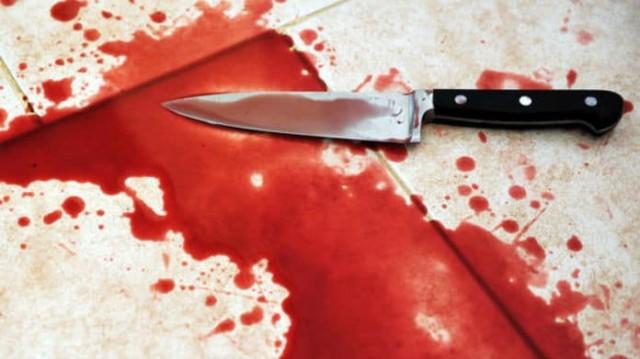 Φρίκη στην Αργυρούπολη: Κατέσφαξε πιτ μπουλ με 17 μαχαιριές! (Αποτρόπαιο φωτογραφικό υλικό)