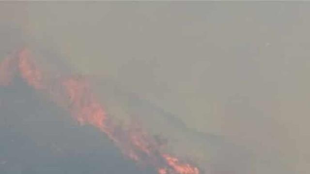 Ξέσπασε μεγάλη πυρκαγιά στα Καλάβρυτα! (Βίντεο)