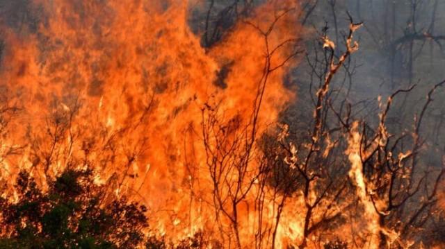 Έκτακτο: Μεγάλη φωτιά αυτή τη στιγμή στους Φούρνους Ικαρίας!
