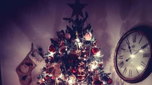 Ήρθαν τα Χριστούγεννα για γνωστή Ελληνίδα δημοσιογράφο! Ποια στόλισε δέντρο με τα παιδιά της;