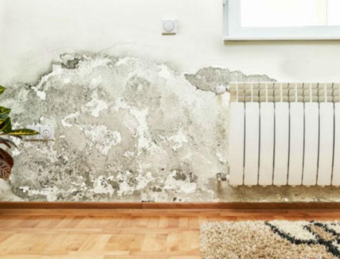 Έχετε στο σπίτι σας υγρασία; Υπάρχει ένας πανεύκολος τρόπος να τη… διώξετε!