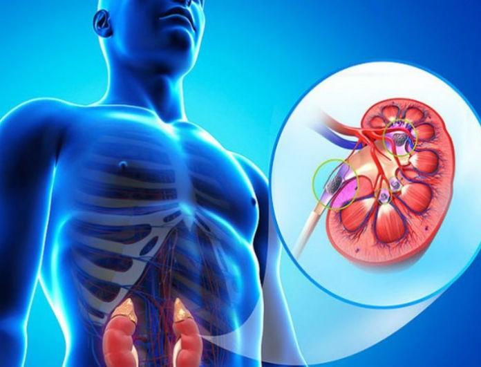 Προσοχή: Αυτές είναι οι τροφές «δηλητήριο» για τα νεφρά και βρίσκονται σε κάθε σπίτι
