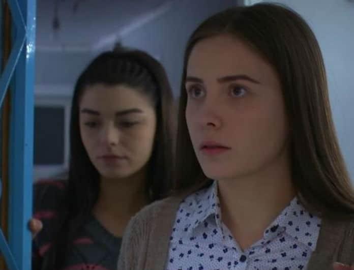 Elif: Η Μελέκ είναι σοκαρισμένη από την αποκάλυψη του Μελίχ και δεν τον πιστεύει!