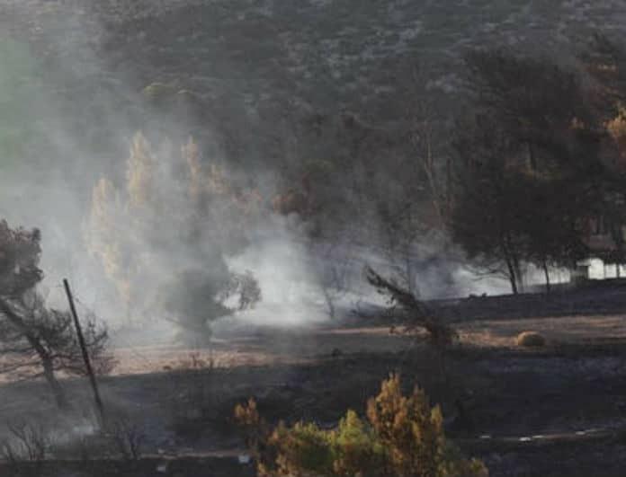 Φωτιές Αττική: Υπήρχε σχέδιο εκκένωσης αλλά κανείς δεν έδωσε εντολή να ενεργοποιηθεί!