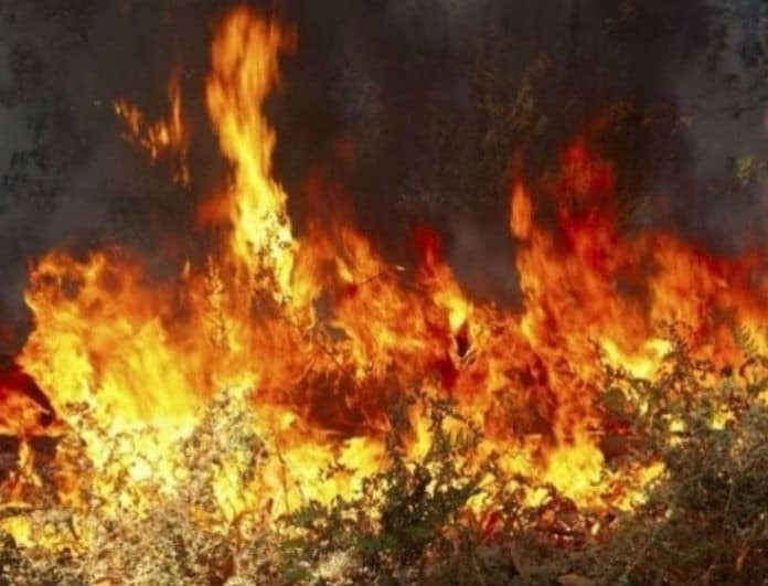 Φωτιά στα Γρεβενά! Σε εξέλιξη βρίσκεται πυρκαγιά!