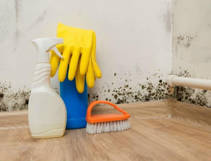 Πως να διώξετε την μούχλα και την υγρασία από το σπίτι; Το υλικό που κάνει θαύματα!