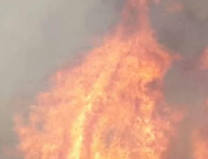 Έκτακτο! Σε εξέλιξη μεγάλη φωτιά στη Λέσβο!