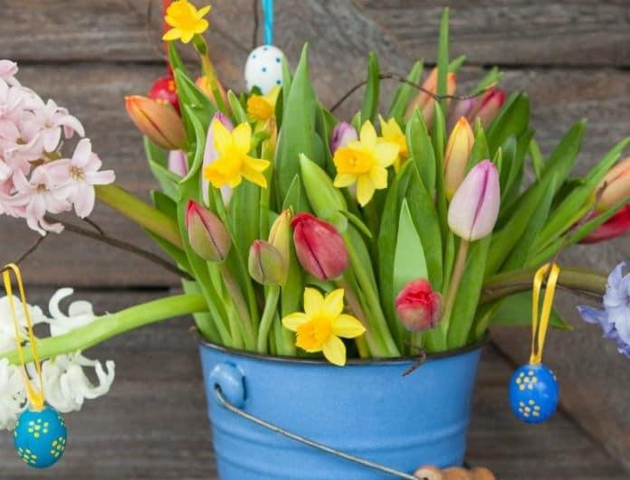 Ζώδια σήμερα: Τι λένε τα άστρα για την Πέμπτη 18 Απριλίου;