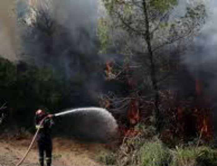 Ραγδαίες εξελίξεις με τη φωτιά στο Σέιχ Σου! Τι λένε οι πληροφορίες;