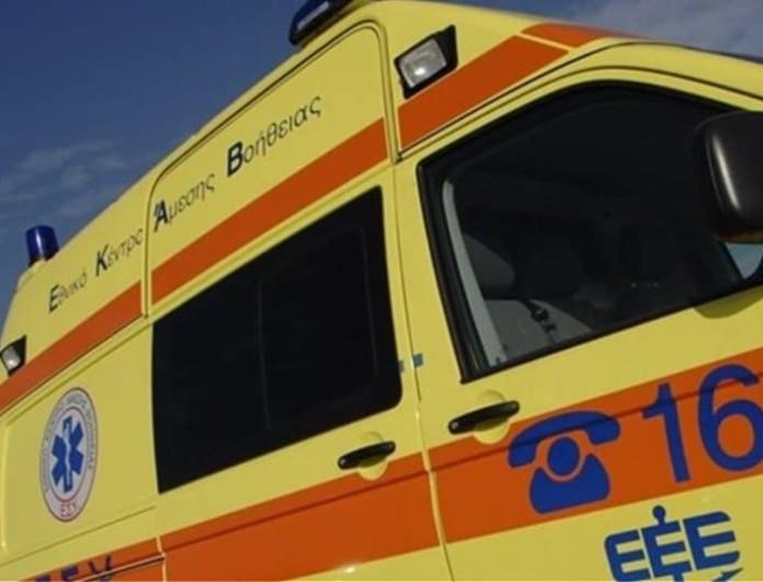 Οκτώ τραυματίες από πτώση δέντρου στα Οινόφυτα - Ανάμεσά τους και παιδιά