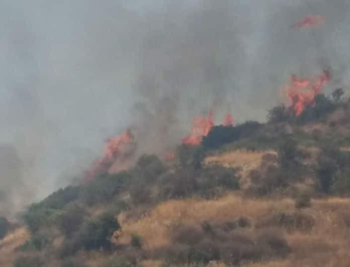 Κύπρος: Ξέσπασε μεγάλη φωτιά στη Λεμεσό!