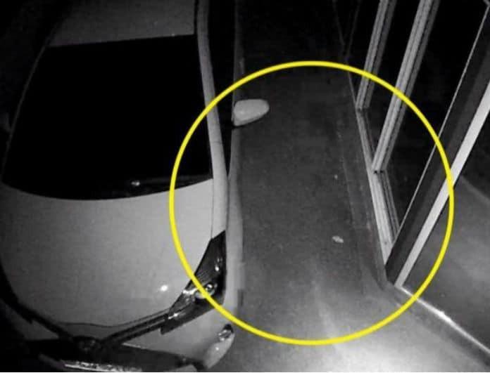 Βίντεο σοκ! «Πάγωσε» όταν είδε αυτό δίπλα στο αυτοκίνητο του!