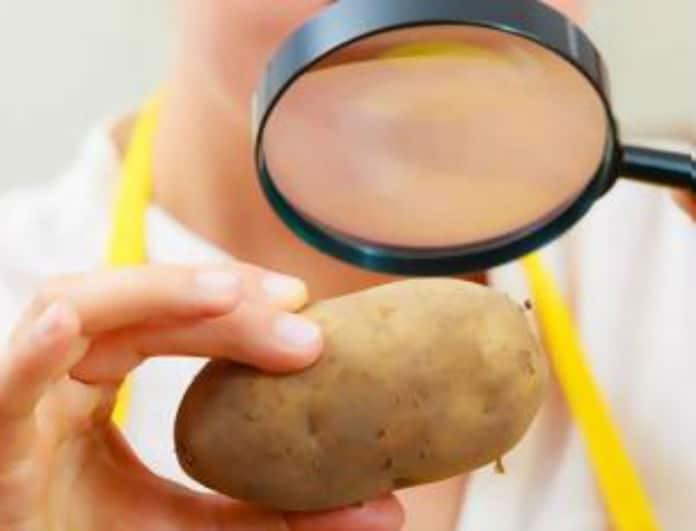 Εσύ το γνώριζες; Αυτός είναι ο λόγος που η φλούδα της πατάτας προστατεύει από τον καρκίνο!