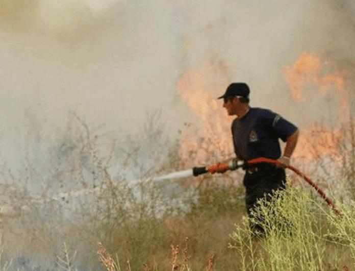 Έκτακτο: Φωτιές σε Κρήτη και Ήπειρο!