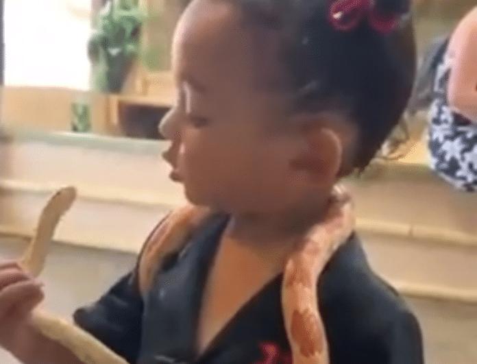 Kim Kardashian: Δημόσια κατακραυγή! Η κόρη της έπαιζε με φίδι κι εκείνη την τραβούσε βίντεο!