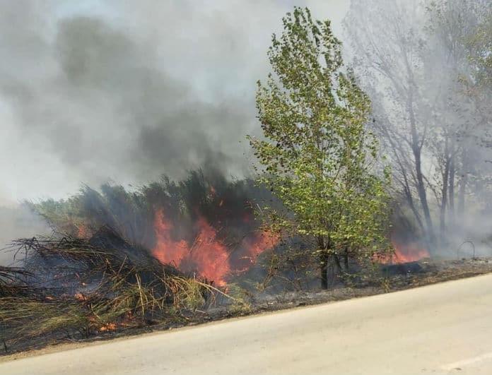 Ξέσπασαν φωτιές στη Νέα Μανωλάδα και στη Μεγαλόπολη!