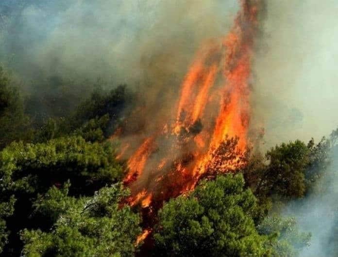 Ξέσπασε πυρκαγιά στην Ρόδο! Στην