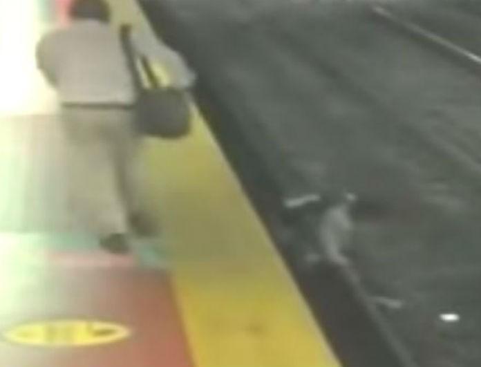 Βίντεο σοκ! Κοίταγε το κινητό του και έπεσε στις γραμμές του τρένου...