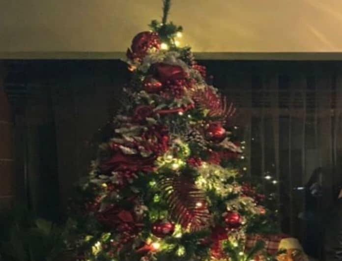 Τα Χριστούγεννα έφτασαν ήδη για πασίγνωστη παρουσιάστρια- Στόλισε από τώρα το δέντρο της!