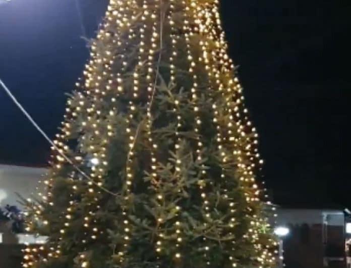 Σε χριστουγεννιάτικους ρυθμούς η Ελλάδα: Το φαντασμαγορικό δέντρο που στήθηκε στη Χαλκιδική!