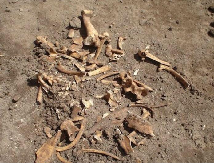 Φρίκη στην Κέρκυρα! Βρέθηκε ανθρώπινος σκελετός θαμμένος σε χωράφι!