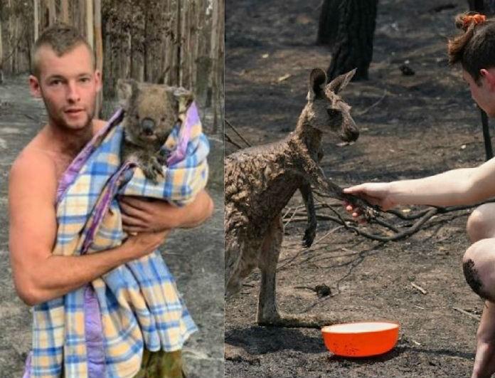 ALERT: Εδώ μπορείς να δωρίσεις λεφτά για την μεγάλη καταστροφή στην Αυστραλία!