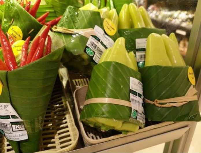 Πλαστικό ή μπανανόφυλλο; Εσύ πως θα συμβάλλεις στην προστασία του περιβάλλοντος;