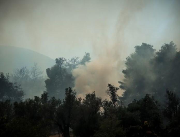 Συναγερμός στην Κάρυστο - Ξέσπασε φωτιά