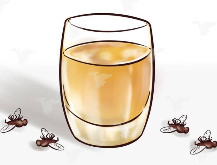 Θα πεθάνουν όλες οι μύγες στο σπίτι σας: Βάλτε ελαιόλαδο με...
