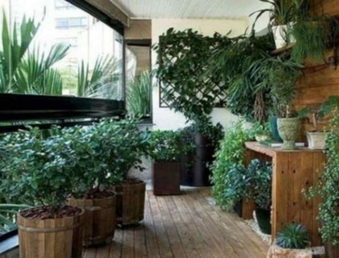 Ρίξτε κανέλα στα φυτά του κήπου και σώστε τα από την... καταστροφή τους