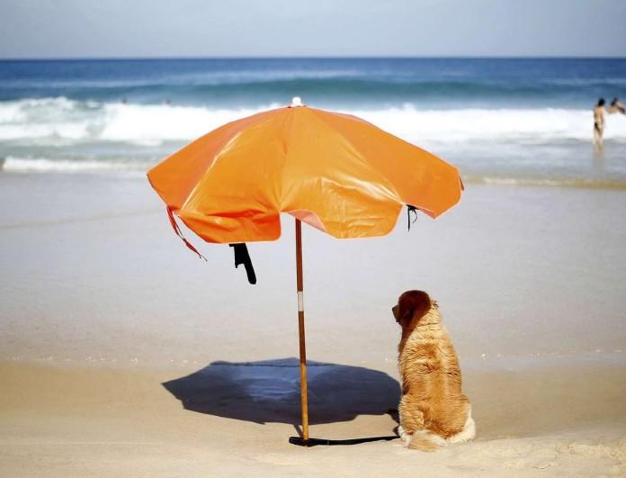 Προειδοποίηση ΕΜΥ 8/9: Το καλοκαίρι καλά κρατεί - Νέα άνοδος της θερμοκρασίας