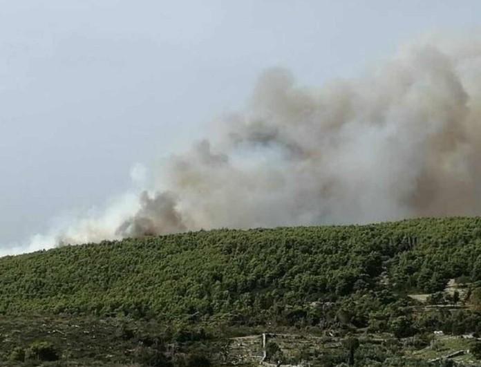 Ζάκυνθος: Μεγάλη φωτιά στις Βολίμες