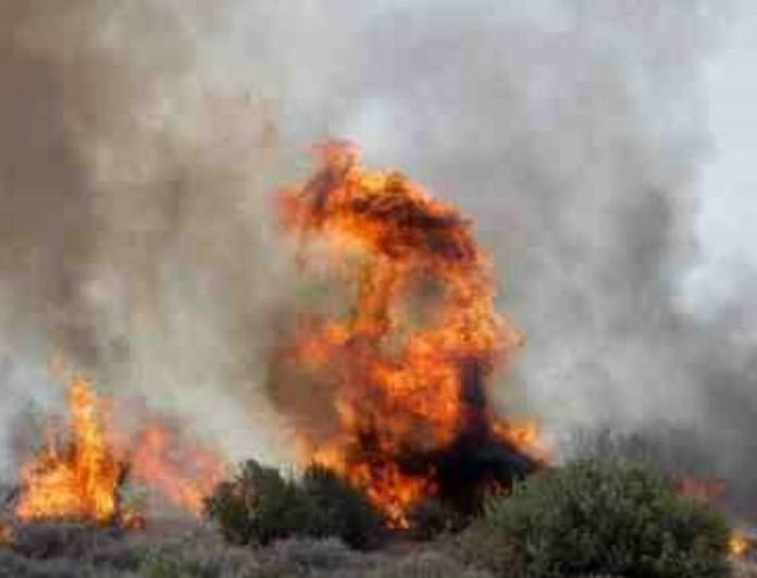 Κρήτη: Μεγάλη φωτιά έχει ξεσπάσει από το πρωί στις Γούβες