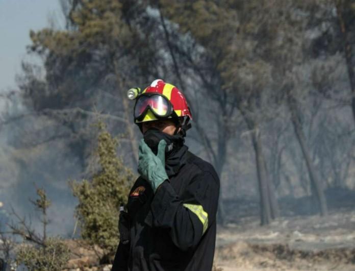 Μεγάλη φωτιά στη Μανωλάδα