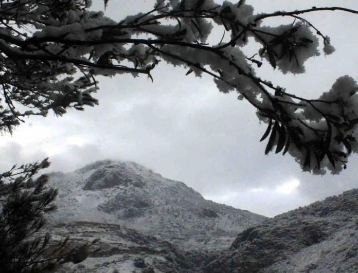 Καιρός: Έρχονται τα πρώτα χιόνια το Σαββατοκύριακο - «Κατάλευκος» ο Παρνασσός