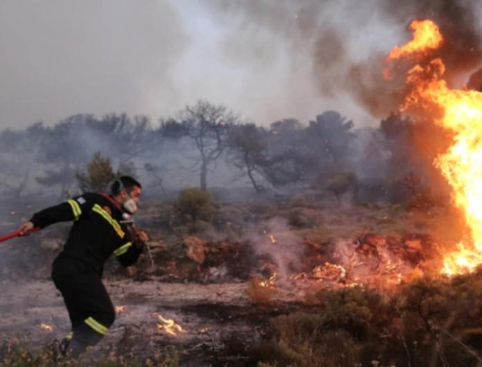 Συναγερμός στην Κρήτη: Φωτιά σε δάσος του Ηρακλείου
