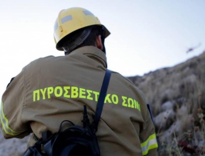 Φωτιά σε δασική έκταση σε Μεγαλόπολη