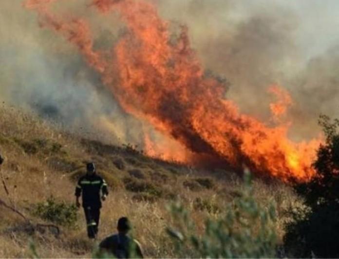 Ξέσπασε μεγάλη φωτιά στην Αιγιάλεια