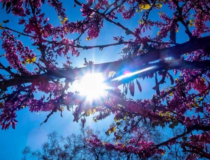 Καιρός 20/4: Ηλιοφάνεια σε σχεδόν όλη την χώρα