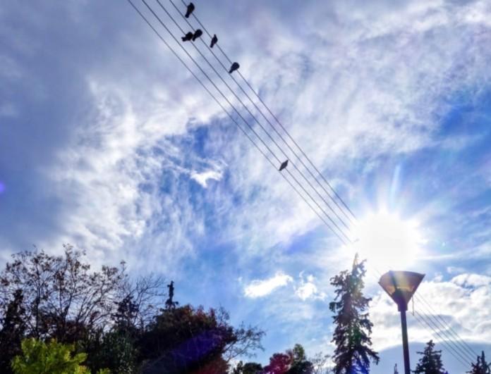 Καιρός: Ζέστη και σκόνη την Κυριακή