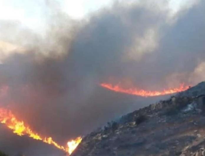 Φωτιά Άνδρος: Ενισχύονται οι πυροσβεστικές δυνάμεις
