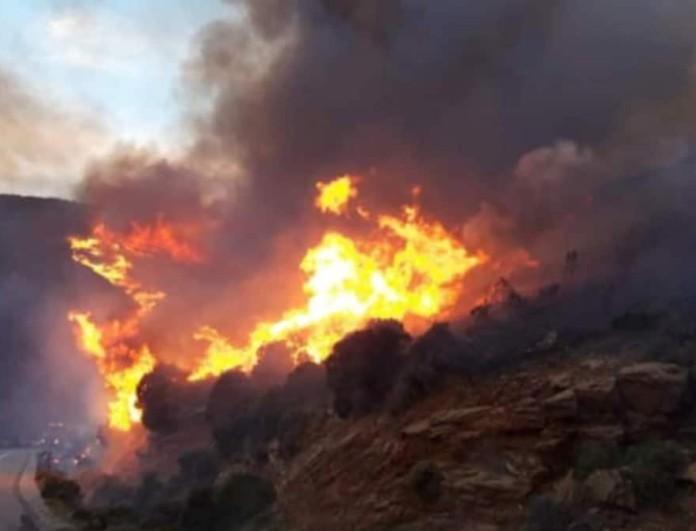 Ξέσπασε φωτιά στην Άνδρο - Έκκληση του Δημάρχου για προληπτική εκκένωση περιοχής