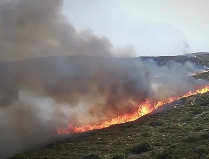 Φωτιά στη Nικήτη Σιθωνίας Χαλκιδικής