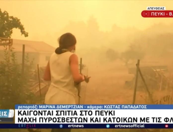 Φωτιά στην Εύβοια: Δημοσιογράφος της ΕΡΤ έσωσε γατάκι από την πυρκαγιά